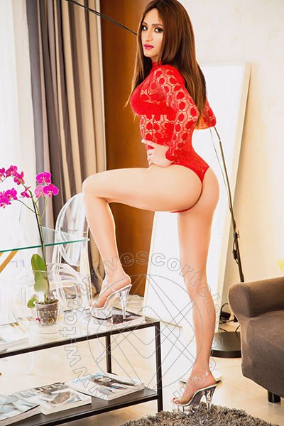 Veronica  PRATO 3808638483